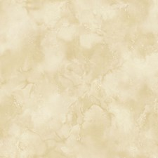 Light Gold Wallcovering by Scalamandre Wallpaper