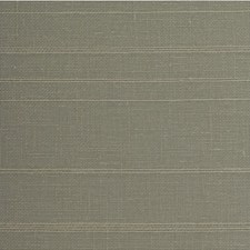 Thyme Solid Wallcovering by Winfield Thybony