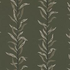 Dark Green/Beige Wallcovering by Scalamandre Wallpaper