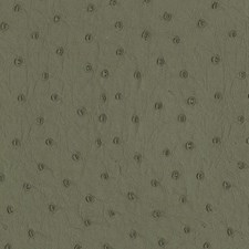 Olive Oil Wallcovering by Scalamandre Wallpaper